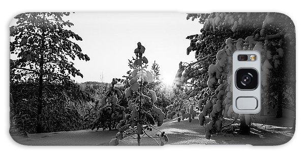 Still Standing In The Winter Sunset Bw Galaxy Case