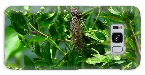 Stonefly  Galaxy Case by Janice Westerberg