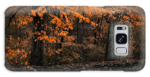 Stonewall In Autumn Galaxy Case
