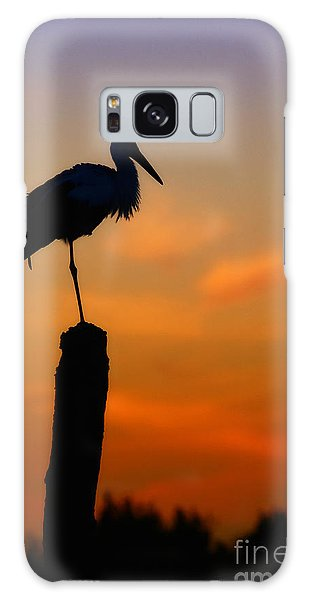 Storck In Silhouette High On A Pole Galaxy Case