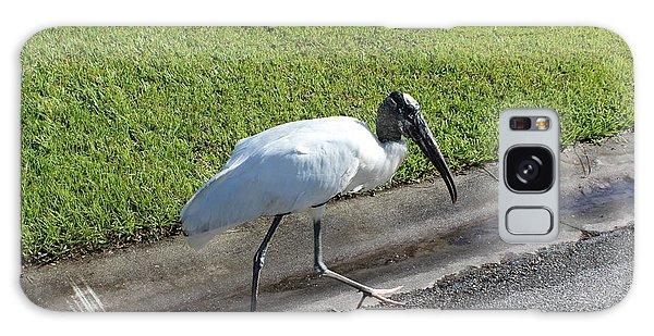 Stork Galaxy Case