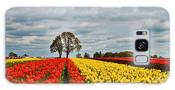 Storm Over Wooden Shoe Tulip Farm Galaxy Case