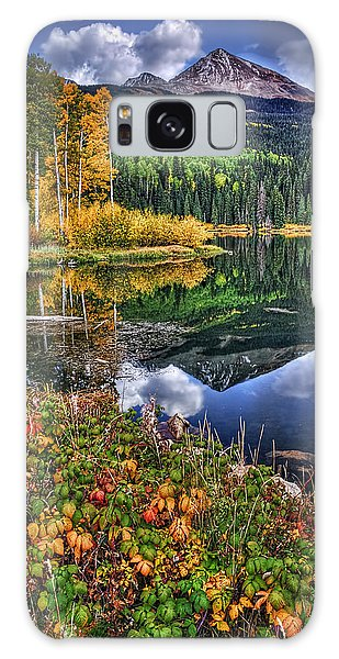 Stormy Skies At Woods Lake Galaxy Case by Priscilla Burgers