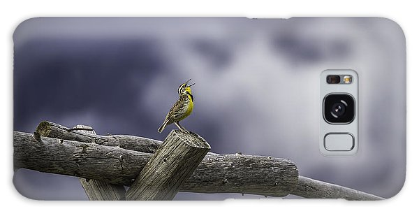 Meadowlark Galaxy Case - Stormy Weather And A Sweet Song by Thomas Young