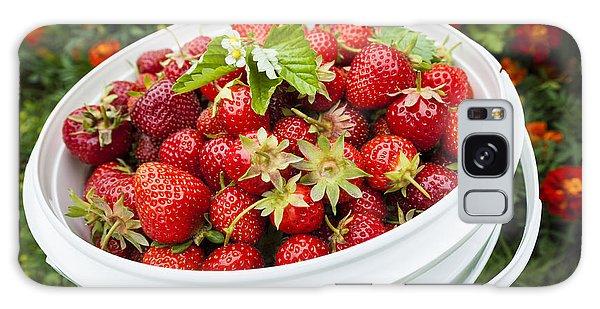 Strawberry Harvest Galaxy Case by Elena Elisseeva