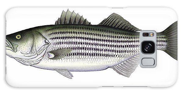 Striped Bass Galaxy Case
