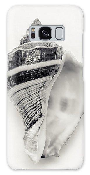 Sea Galaxy Case - Striped Sea Shell by Lucid Mood
