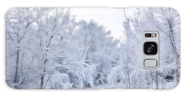 Stroll Through A Winter Wonderland Galaxy Case by Diane Alexander