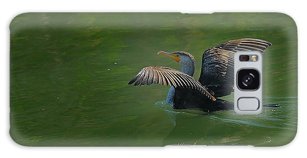 Strutting Cormorant Galaxy Case