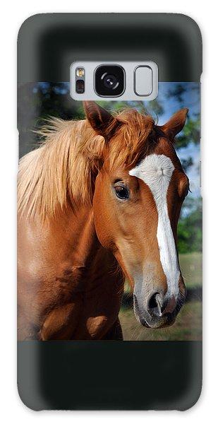 Stud Horse  Galaxy Case