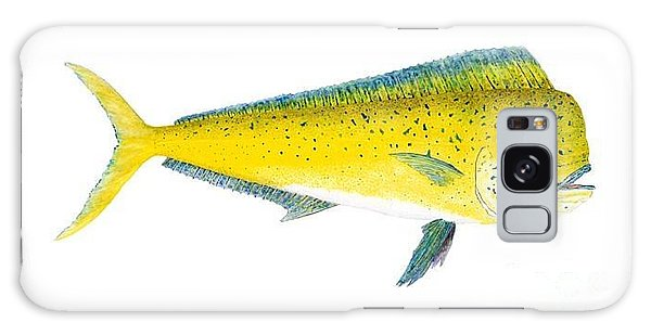 Study Of A Mahi Mahi Galaxy Case