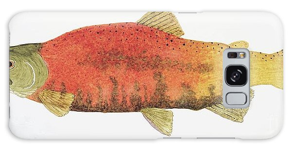 Study Of A Male Kokanee Salmon In Spawning Brilliance Galaxy Case