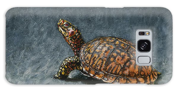 Study Of An Eastern Box Turtle Galaxy Case