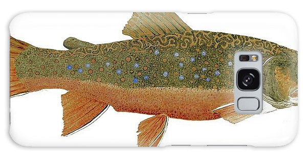 Study Of An Wild Eastern Brook Trout  Galaxy Case