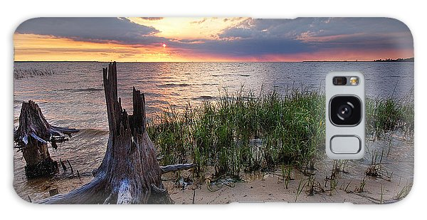 Stumps And Sunset On Oyster Bay Galaxy Case