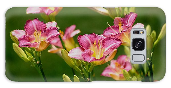 Stunning Day Lilies Galaxy Case by Living Color Photography Lorraine Lynch