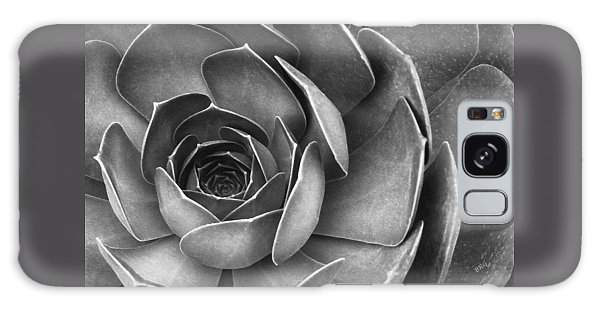 Succulent In Black And White Galaxy Case by Ben and Raisa Gertsberg