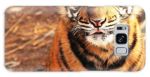Sumatran Tiger Cub Galaxy Case