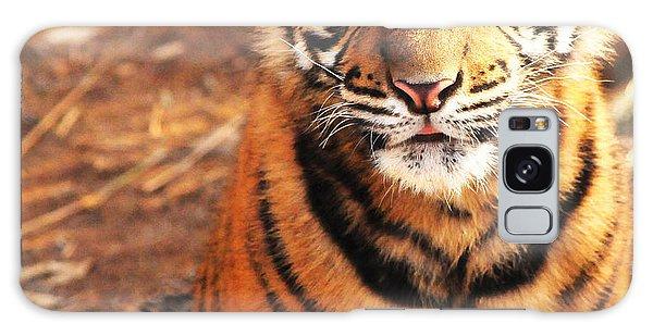 Sumatran Tiger Cub Galaxy Case by Olivia Hardwicke