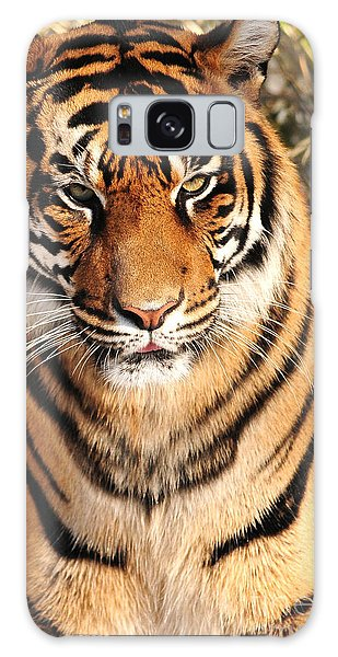 Sumatran Tiger Galaxy Case by Olivia Hardwicke