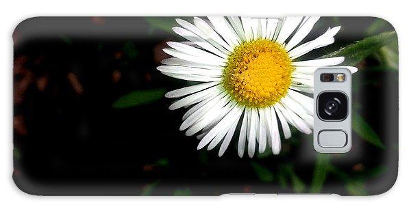 Summer Daisy Galaxy Case