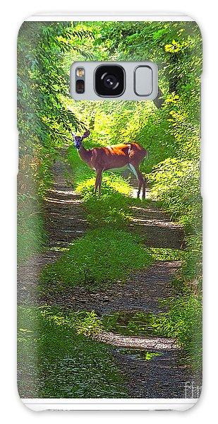 Summer Deer Galaxy Case