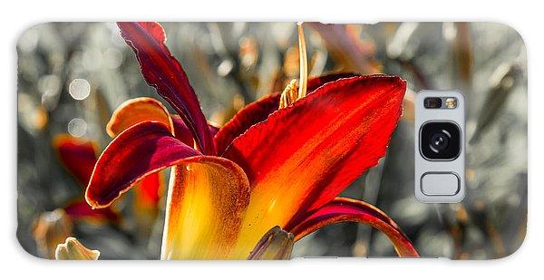 Summer Garden 2 Galaxy Case by Susan Cole Kelly Impressions