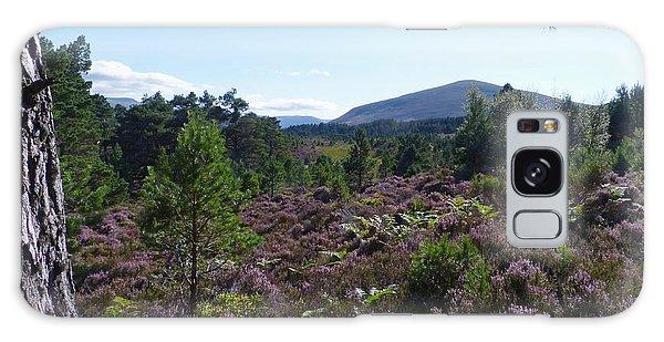 Summer In Abernethy Forest Galaxy Case