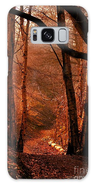 Summer In Sots Hole Galaxy Case by Stephen Melia