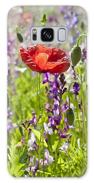 Summer Galaxy Case by Lana Enderle