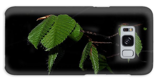 Summer Leaves On Black Galaxy Case