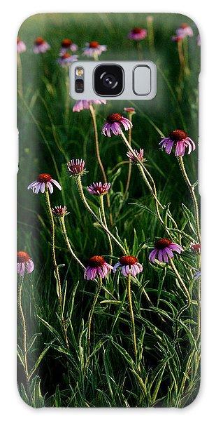 Summer Of Echinacea Galaxy Case