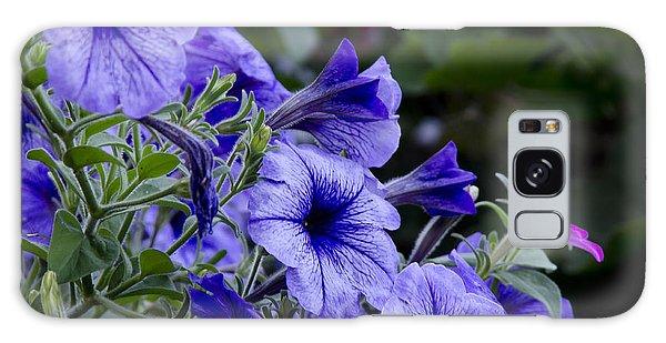 Summer Petunias Galaxy Case by Wilma  Birdwell