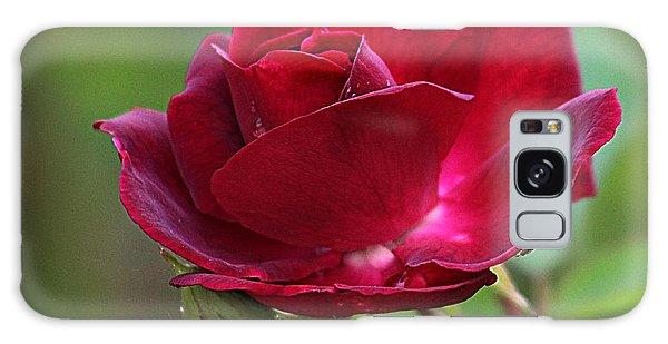 Summer Rose Galaxy Case by Karen McKenzie McAdoo