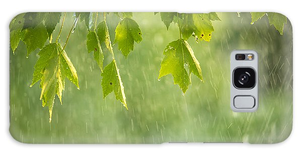 New Leaf Galaxy Case - Summer Shower by Diane Diederich