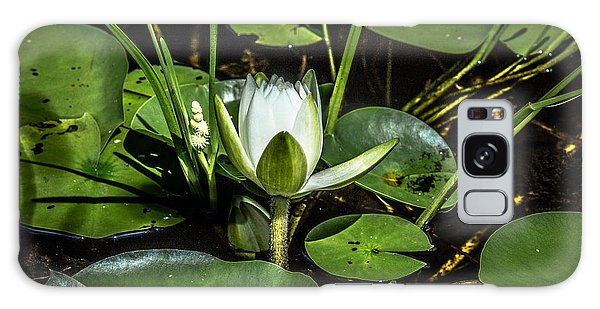 Summer Water Lily 2 Galaxy Case by Susan Cole Kelly Impressions