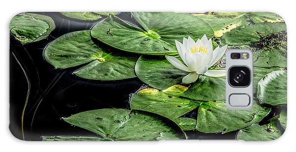 Summer Water Lily 3 Galaxy Case by Susan Cole Kelly Impressions