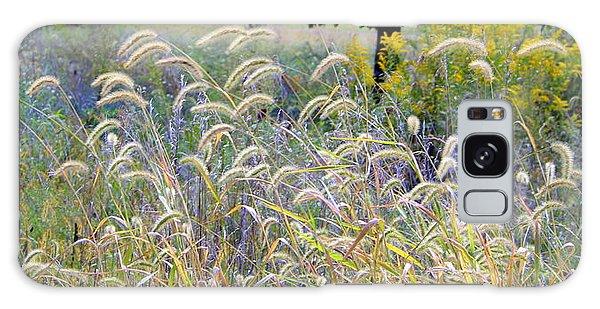 Summer Wheat Galaxy Case
