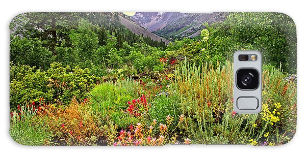 Summer Wildflowers In Lundy Canyon Galaxy Case