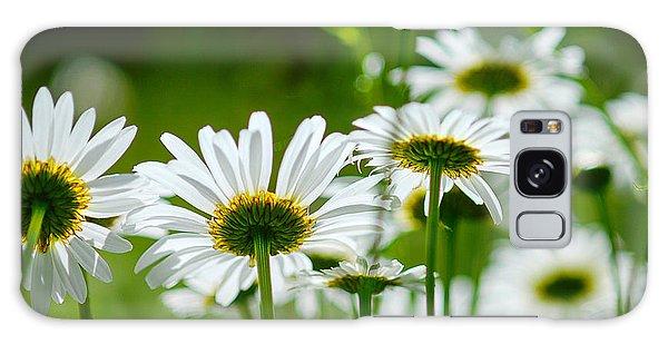 Summer Time Daisys Galaxy Case