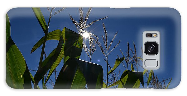 Sun Above The Corn  Galaxy Case