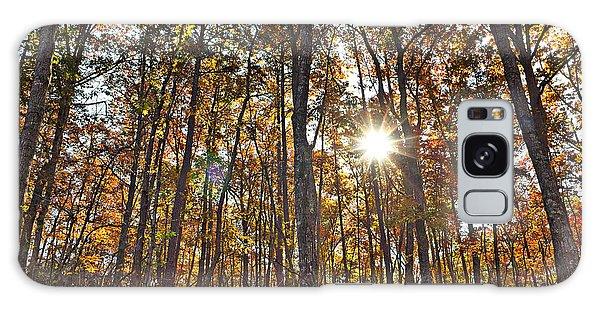 Sun Beams Dance In Autumn Trees Galaxy Case