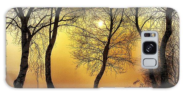 Sun Behind The Trees Galaxy Case