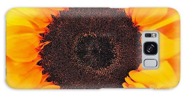 Sun Delight Galaxy Case by Angela J Wright