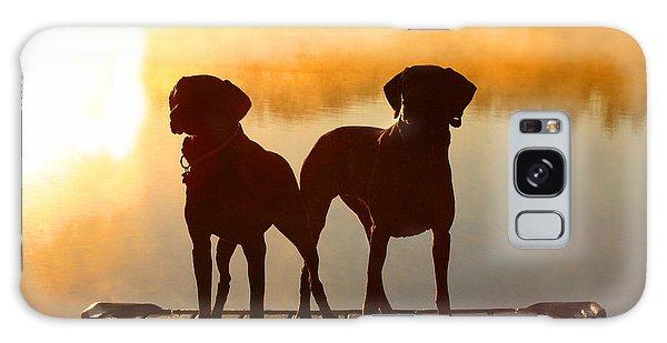 Sun Dogs Galaxy Case by Brook Burling