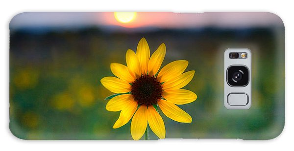 Sun Flower Iv Galaxy Case by Peter Tellone