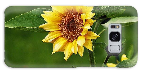 Sun Flower Shines Galaxy Case by Al Fritz