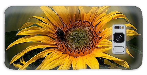 Sun Flower Summer 2014 Galaxy Case