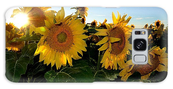 Sun Flowers And Pollen Wcae2  Galaxy Case