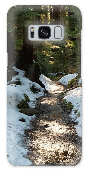 Ecosystem Galaxy Case - Sun Lit Trail, Olympic National Park by Art Wolfe